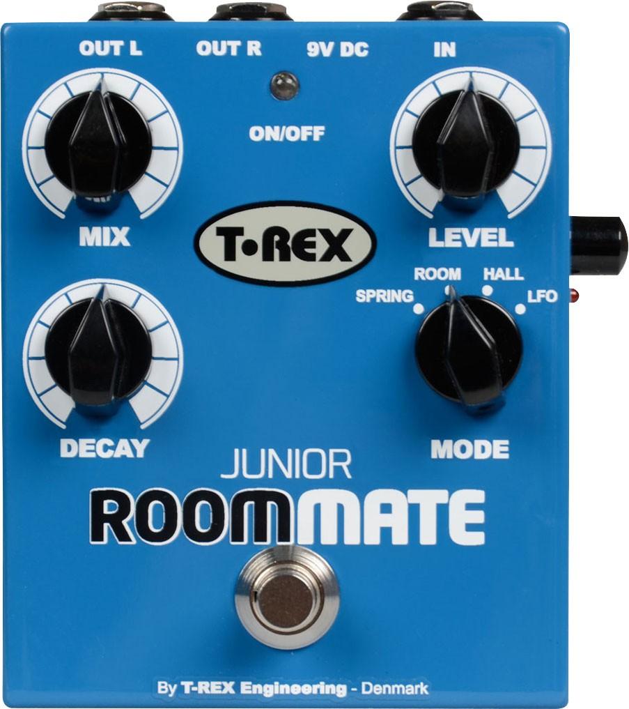 T Rex Junior Room Mate