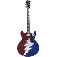 D Angelico Premier DC Grateful Dead
