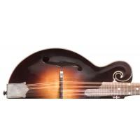 Gibson Mandoline F 5 G