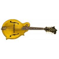 Gibson Mandoline F 5 Goldrush