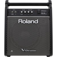 Roland PM 100 Personal Monitor