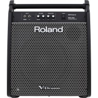 Roland PM 200 Personal Monitor