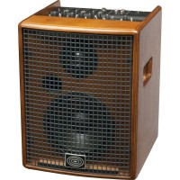 Schertler Jam 100W 4 Channels Amp Wood