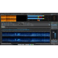 Steinberg Wavelab Pro 9 5 inkl  Upgrdae 11