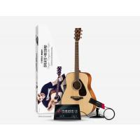 Yamaha Singer Songwriter Set