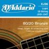 D'Addario EJ36 Ac. Bronze 12 Strings Ecoline