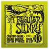 Ernie Ball 2221 10-46 Regular Slinky Nickel